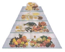 ernaehrungspyramide-neu